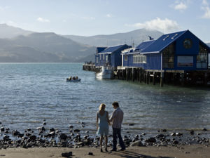 Akaroa Harbour and wharf