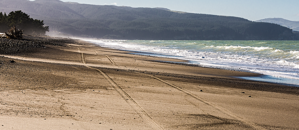 Amberley Beach is a long stretch of sandy coast about an hour's drive north of Christchurch