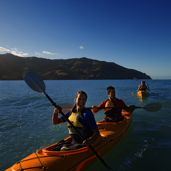 Kayaking in Akaroa