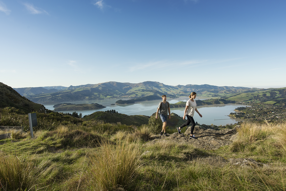 Wander the Port Hills on the edge of Christchurch city