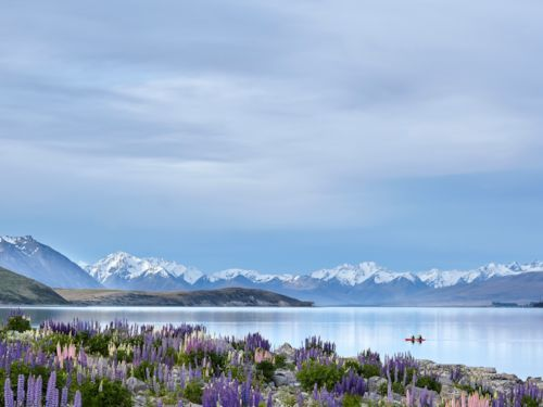 Things to see and do in Lake Tekapo, New Zealand