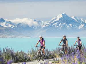Cycle along the banks of Lake Pukaki