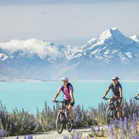 Experience the beauty of Lake Pukaki on the Alps 2 Ocean cycle trail.