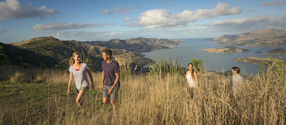 Wander the Port Hills