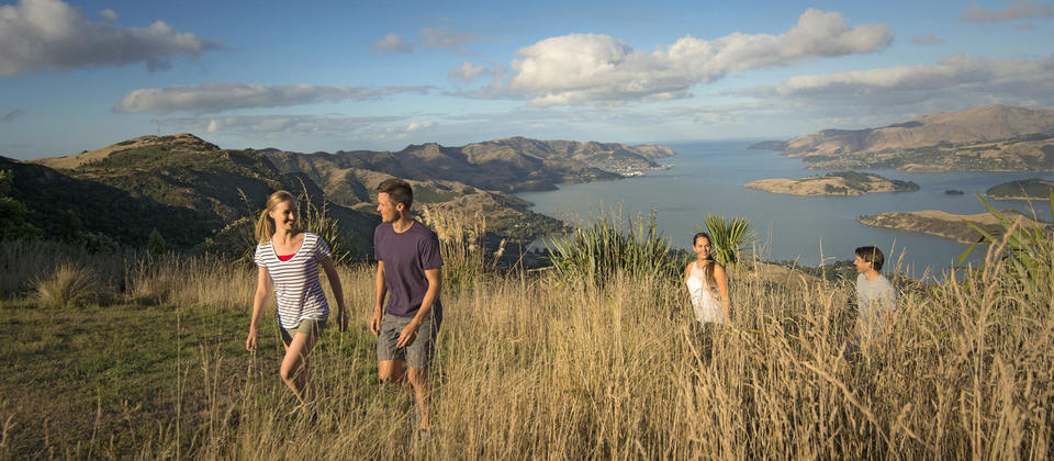 Enjoy the views from Christchurch's Port Hills
