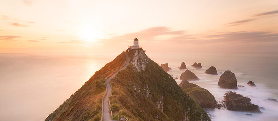 Nugget Point coastlines & wildlife