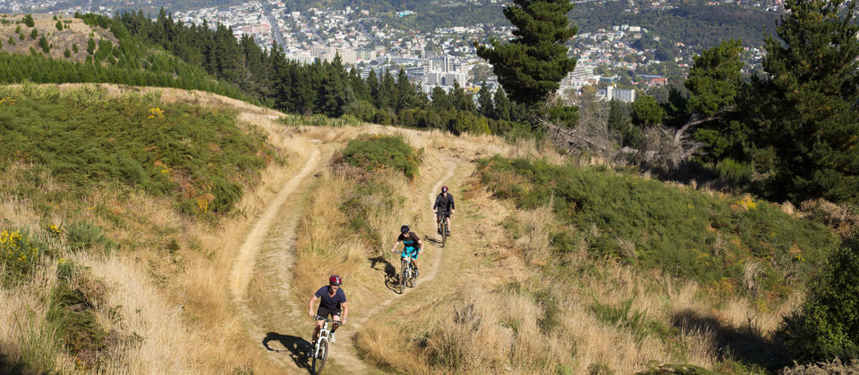 Take a ride down the Signal Hill Track in Dunedin, with the city spread out before you.