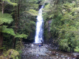 Hollyford Track Walking Tour