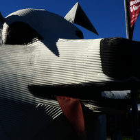 Tirau's giant corrugated iron dog