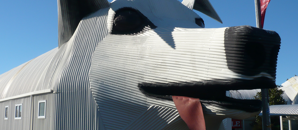 Tirau's giant corrugated iron dog and sheep dominate the town's main street.