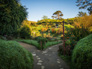 Hobbiton™ Movie Set