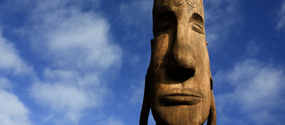 Tokoroa's 'talking pole'