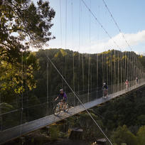 This long suspension bridge is surrounded by lush New Zealand scenery.