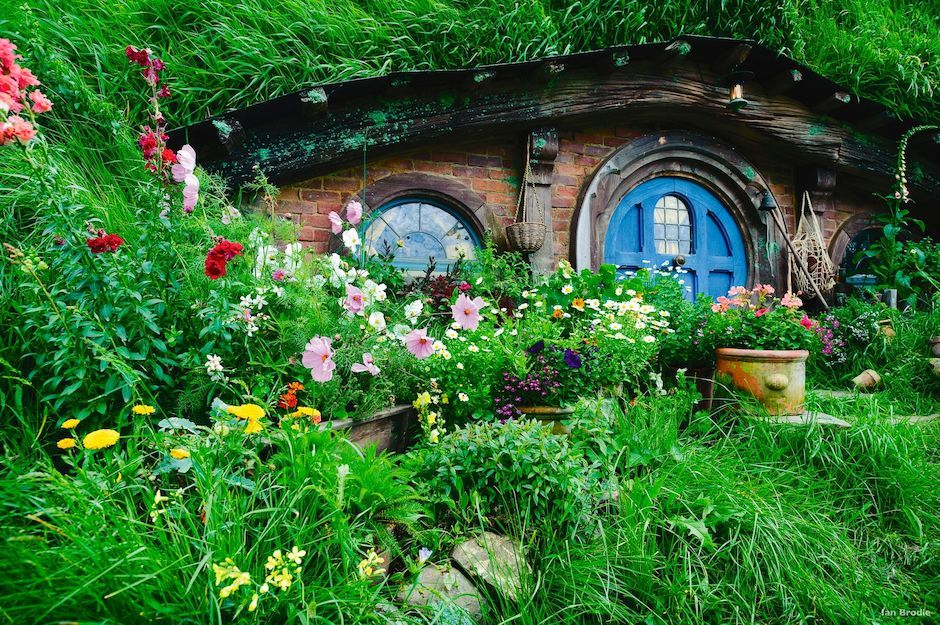 Hobbit Holes and Wildflowers