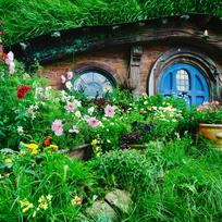 Explore the Real Middle Earth at the Hobbiton movie set, located on rolling farmland near Matamata, a two-hour scenic drive from Auckland.