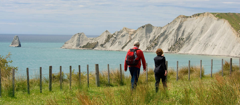 Cape Kidnappers is an extraordinary sandstone headland, home to to the largest and most accessible gannet colony