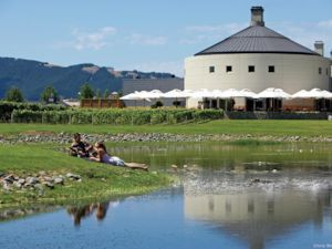 Relax at a winery after shopping