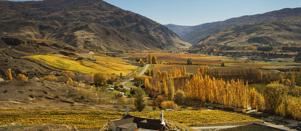 Mt Difficulty Wines is located in Bannockburn, well within an hour's drive of both Queenstown and Wanaka.