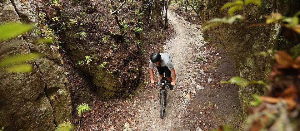Waihora Mountain Bike Trail