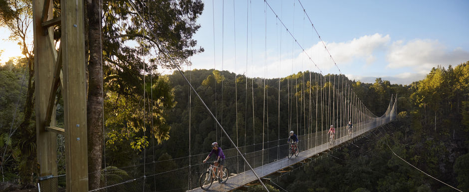 Large suspension bridges are a highlight of this back country ride through native forest.