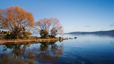 Lake Taupō is beautiful in autumn.