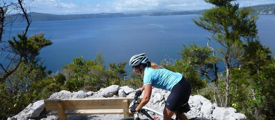 Waihaha to Waihora,Great Lake Trail