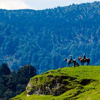 Horse riding in the Rangitikei, New Zealand