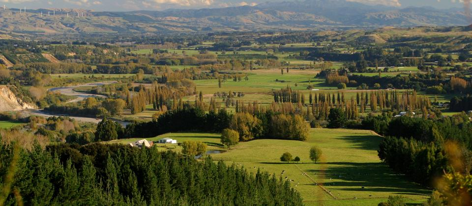 Tōtara Reserve lies in the lush Pohangina Valley.