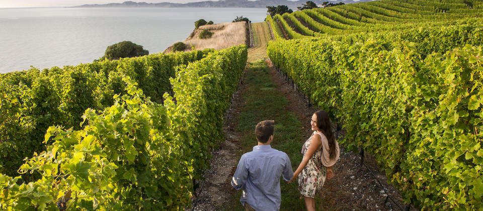 For couples who love good wine and food, as well as fresh-air exercise, Marlborough is a destination made in heaven. Explore on bikes or on foot.