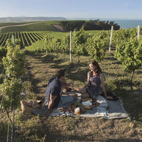 Spectacular views make the perfect accompaniment for a picnic among the vines in Marlborough.