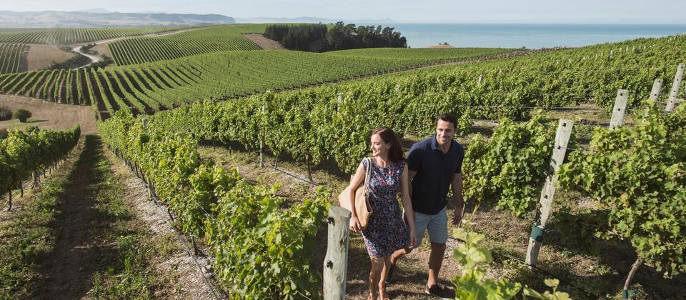 Taste your way around New Zealand, and you'll discover food and wine that's original, world-class, and fresh from the source.