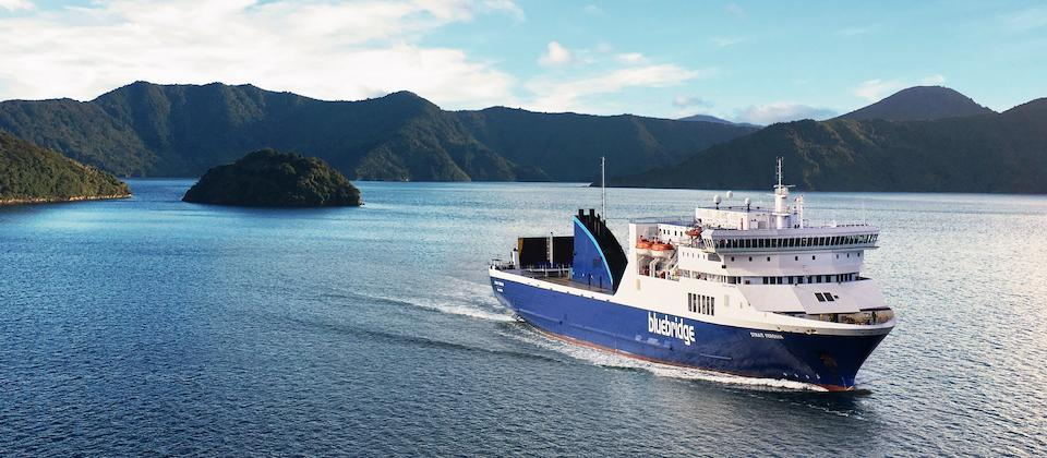 Strait Feronia, Marlborough Sounds