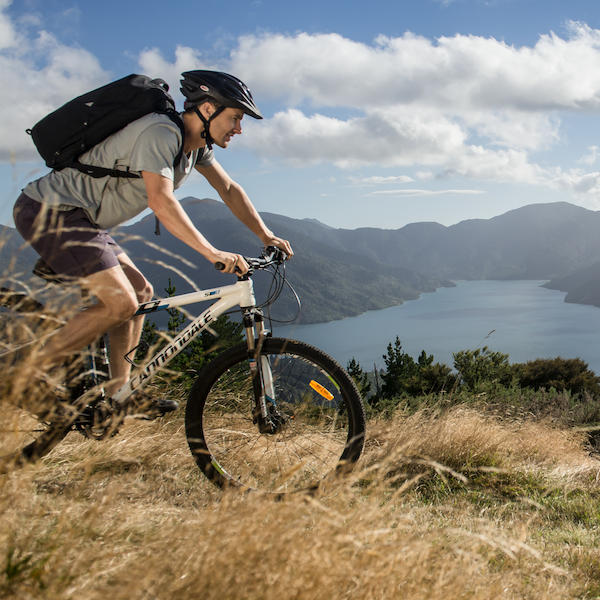 Cycle the Queen Charlotte Track