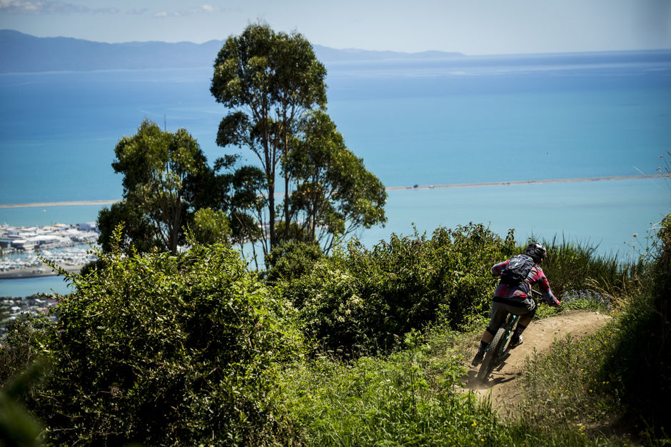 The Dun Mountain Trail is only 15 mins by bike from Nelson.