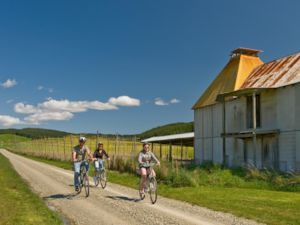 Cycling in Upper Moutere