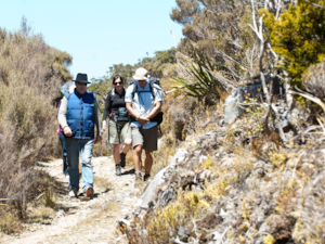 Hiking the Heaphy Track