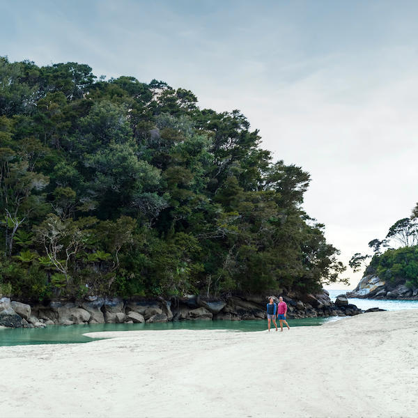 Explore Abel Tasman National Park
