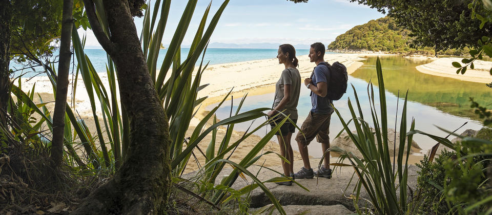 Hike or kayak from campsite to campsite in Abel Tasman National Park
