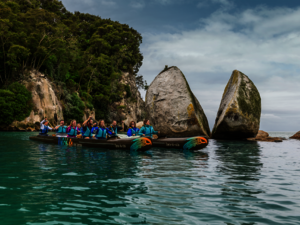 Kayak in Abel Tasman National Park