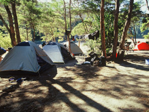 Bark Bay Campsite