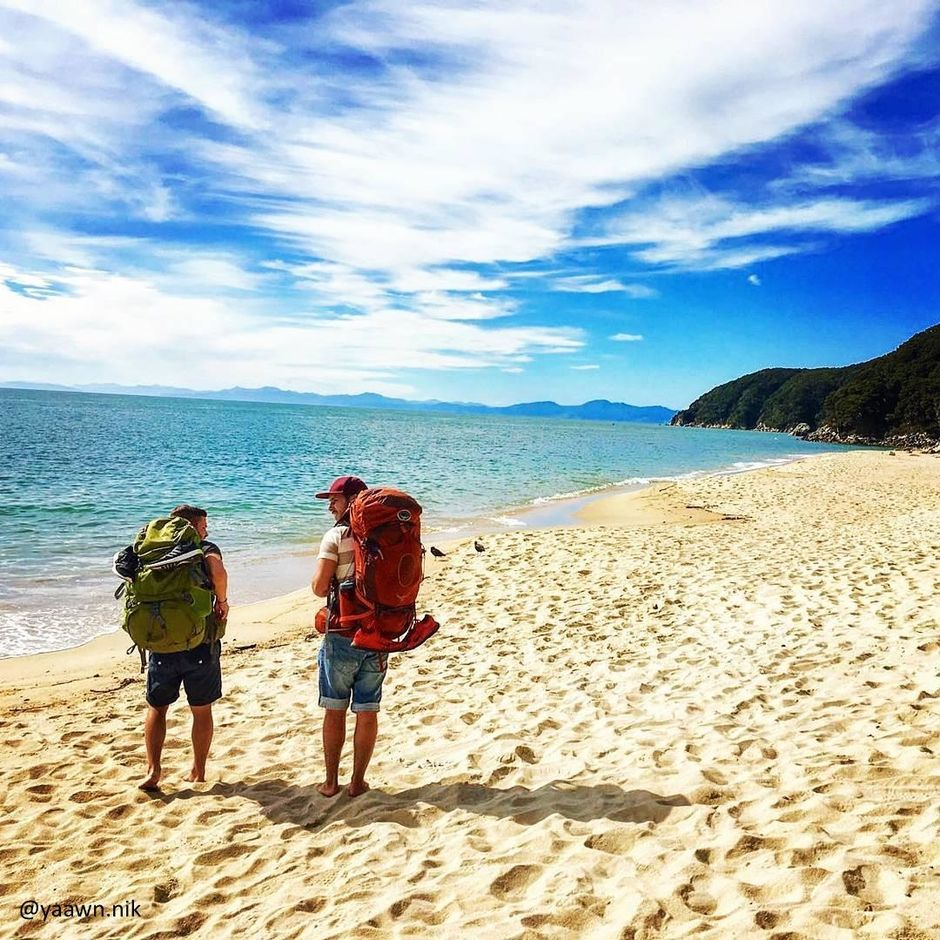 The Abel Tasman National Park features stunning coastal tracks, including the Abel Tasman Coastal Walk - a New Zealand Great Walk.
