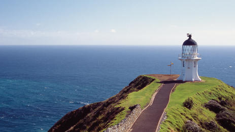 Maori spirits are said to travel after death to the Pohutukawa tree on Cape Reinga.