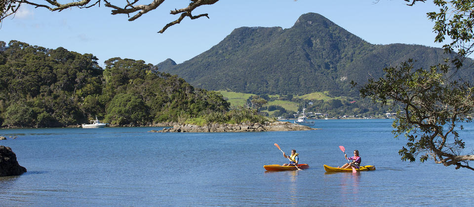 Kayaking near Whangarei Heads