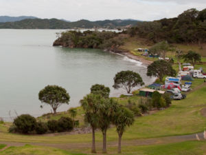 Puriri Bay Campsite