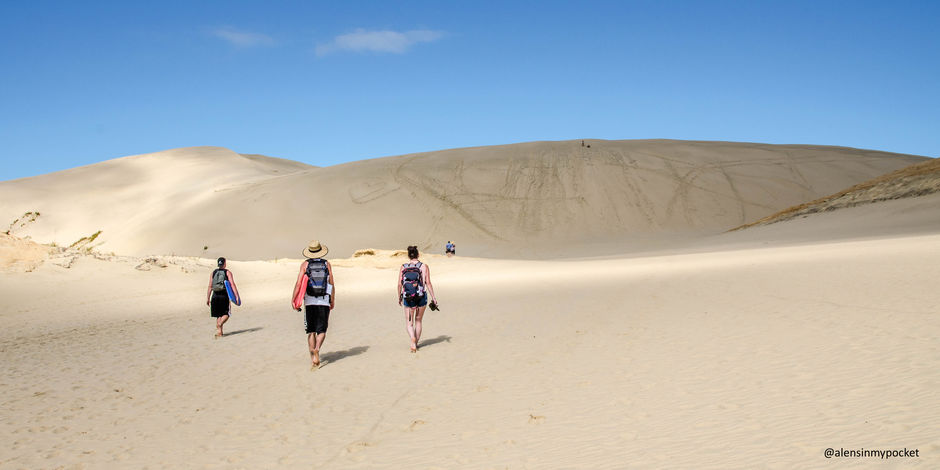 Boarding the epic sand dunes in Northland.
