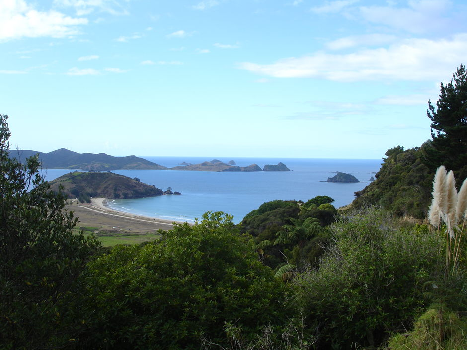 The Cavalli Islands sit in Matauri Bay known for its long golden sandy beach.