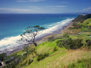 Coastline at Mangawhai Heads