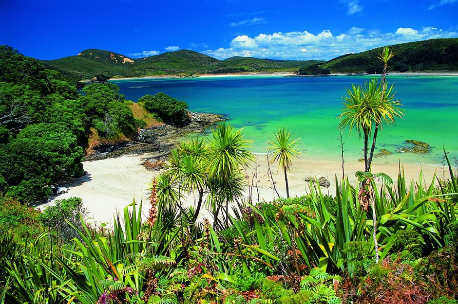 For excellent fishing, diving and swimming, discover Coopers Beach, Cable Bay, Taipa Tokerau Beach, Maitai Bay and many others.