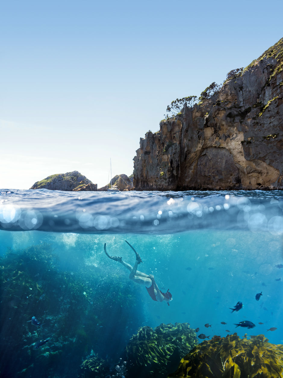 Float over a Marine Reserve on Poor Knights Islands, one of the top diving locations in the world.