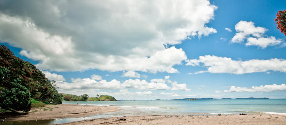 Explore idyllic Coopers Beach in Doubtless Bay
